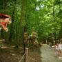 Dínók és vadaspark… Irány Budakeszi!